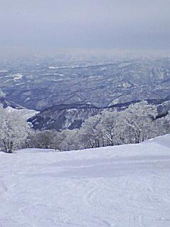 大好きなスキー場は